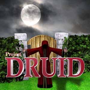 Project Druid 2D Labyrinth Explorer Key Kaufen Preisvergleich