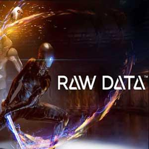 Raw Data Key Kaufen Preisvergleich