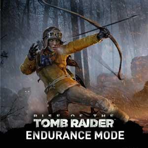 Rise of the Tomb Raider Endurance Mode Key Kaufen Preisvergleich