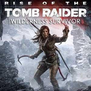 Rise of the Tomb Raider Wilderness Survivor Key Kaufen Preisvergleich