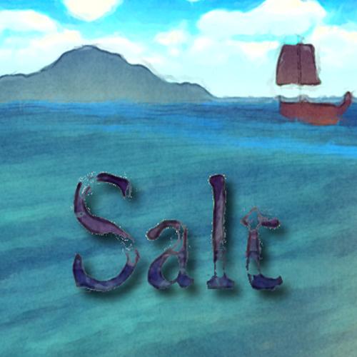 Salt Key Kaufen Preisvergleich