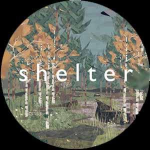 Shelter Key Kaufen Preisvergleich