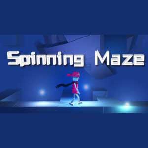 Spinning Maze Key Kaufen Preisvergleich