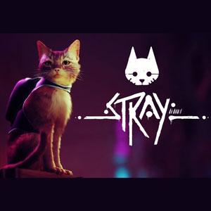 Stray Key kaufen Preisvergleich