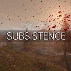 Subsistence Key Kaufen Preisvergleich