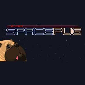 Super Space Pug Key Kaufen Preisvergleich