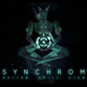 Synchrom Key Kaufen Preisvergleich