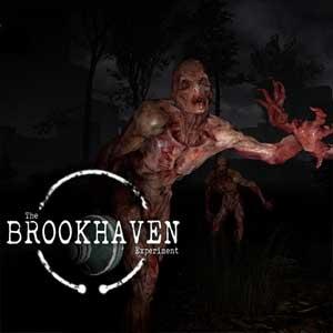 The Brookhaven Experiment Key Kaufen Preisvergleich