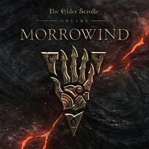 The Elder Scrolls Online Morrowind PS4 Code Kaufen Preisvergleich