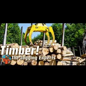 Timber The Logging Experts Key Kaufen Preisvergleich