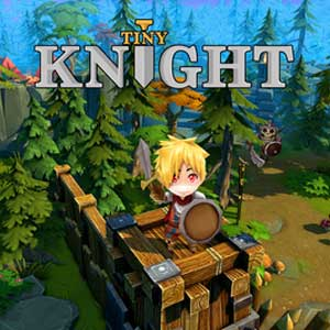 Tiny Knight Key Kaufen Preisvergleich
