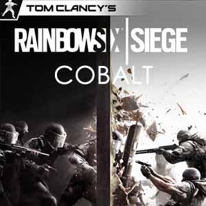 Tom Clancys Rainbow Six Siege Cobalt Key Kaufen Preisvergleich