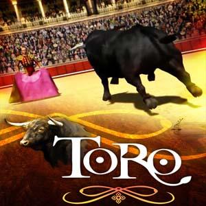 Toro PS4 Code Kaufen Preisvergleich