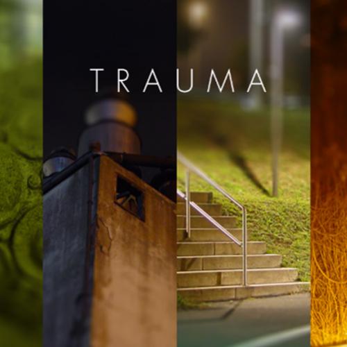 Trauma Key Kaufen Preisvergleich