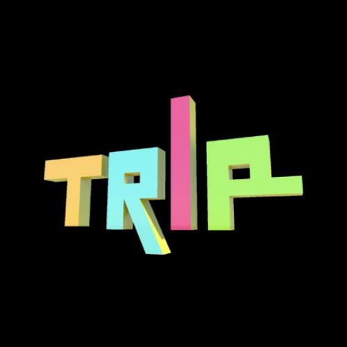 TRIP Key Kaufen Preisvergleich