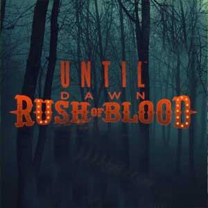 Until Dawn Rush of Blood PS4 Code Kaufen Preisvergleich