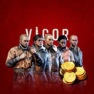 VIGOR STARTER PACK