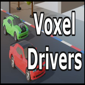 Voxel Drivers