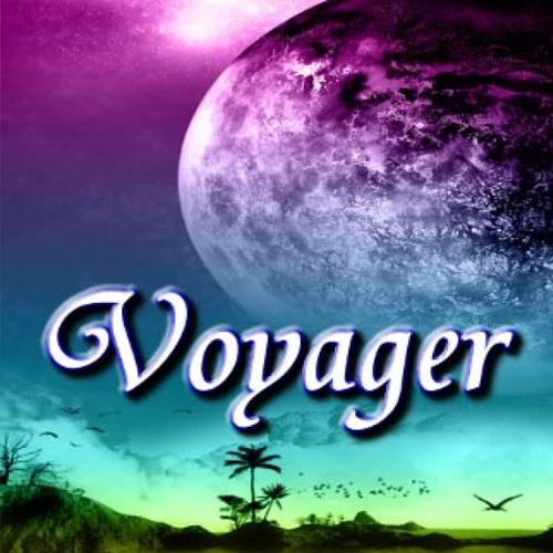 Voyager Key Kaufen Preisvergleich