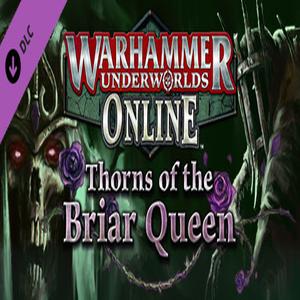 Warhammer Underworlds Online Warband Thorns of the Briar Queen Key kaufen Preisvergleich