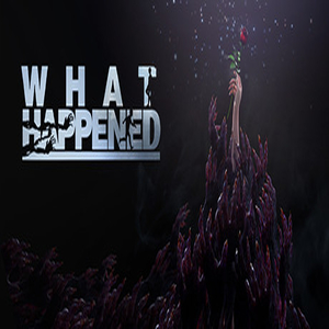 What Happened