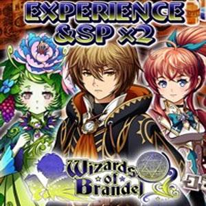 Wizards of Brandel Experience & SP x2
