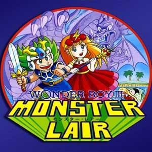 Wonder Boy 3 Monster Lair Key Kaufen Preisvergleich