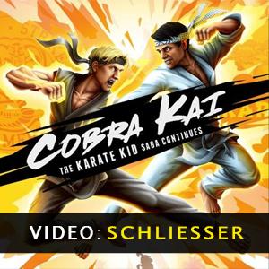 Cobra Kai The Karate Kid Saga Continues Trailer Video