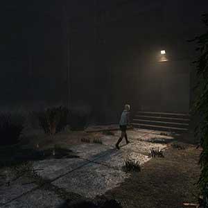Ein Schritt in den Nebel