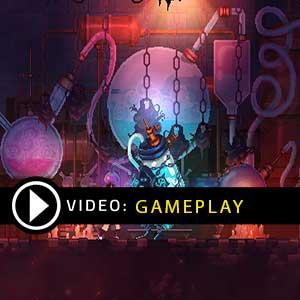 Kaufe Dead Cells PS4 Preisvergleich