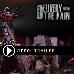 Delivery from the Pain Key kaufen Preisvergleich