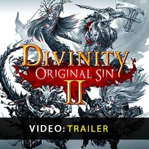 Divinity Original Sin 2 CD-Schlüssel kaufen Preise vergleichen
