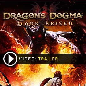 Dragons Dogma Dark Arisen Key Kaufen Preisvergleich