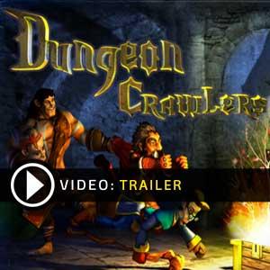 Dungeon Crawlers HD Key Kaufen Preisvergleich