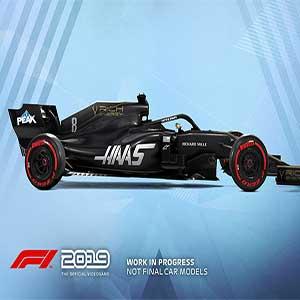 F1 2019 Hass Rich Energy Mannschaft