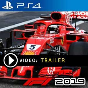 F1 2019 PS4 Digital Download und Box Edition