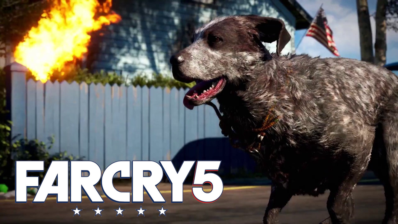 waffen far cry 5