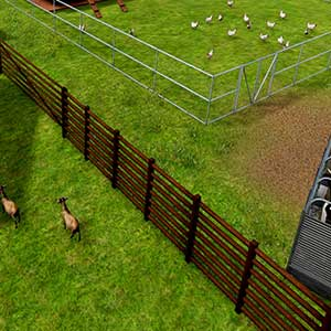 Farm Manager 2018 Bauernhof-Tiere