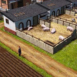 Farm Manager 2021 - Schweinestall