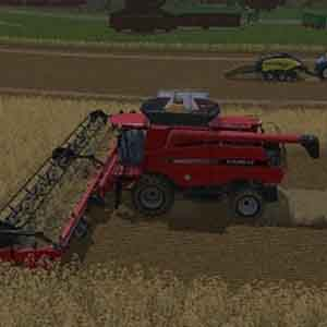 Ernten Getreide