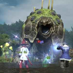 Final Fantasy 14 A Realm Reborn PS4 Kampf