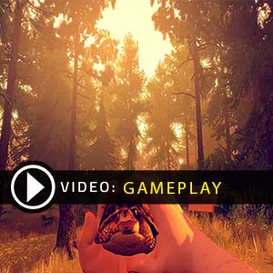 FireWatch Gameplay Video