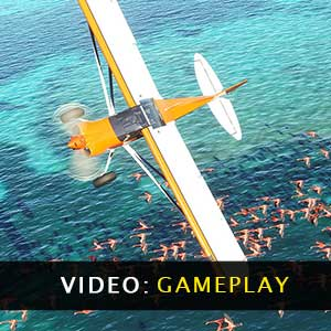 Flight Simulator Gameplay Video