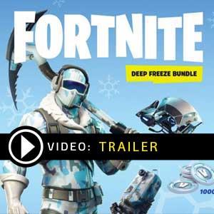 Fortnite Deep Freeze Bundle Key Kaufen Preisvergleich