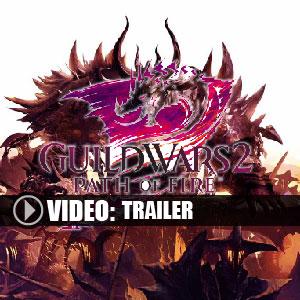 Guild Wars 2 Path of Fire Key Kaufen Preisvergleich