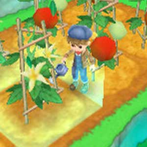 Harvest Moon 3D A New Beginning Nintendo 3DS Watering Plants