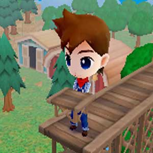 Harvest Moon The Lost Valley Nintendo 3DS Brücke