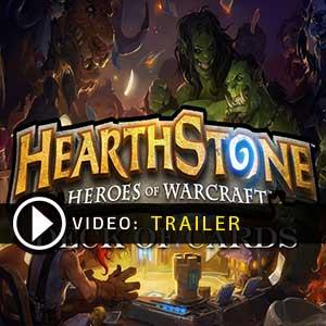 Hearthstone Heroes of Warcraft Deck of Cards Gamecard Code Kaufen Preisvergleich