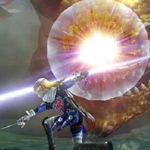 Hyrule Warriors Nintendo Wii U Kampf
