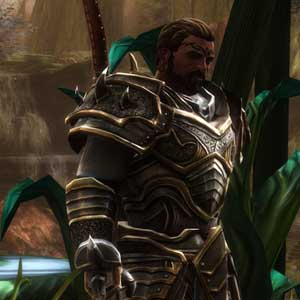 Kingdoms of Amalur Re-Reckoning neu gemasterte Grafiken